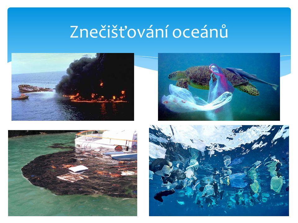 Znečišťování oceánů