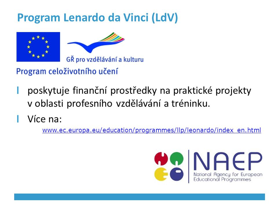 Program Lenardo da Vinci (LdV)