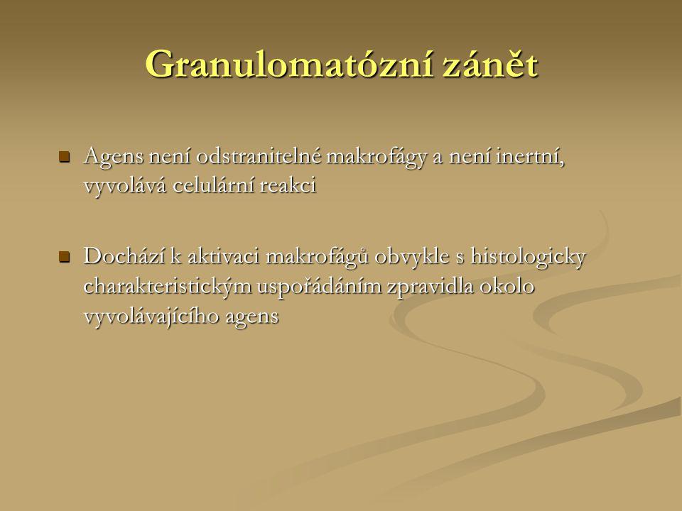 Granulomatózní zánět Agens není odstranitelné makrofágy a není inertní, vyvolává celulární reakci.