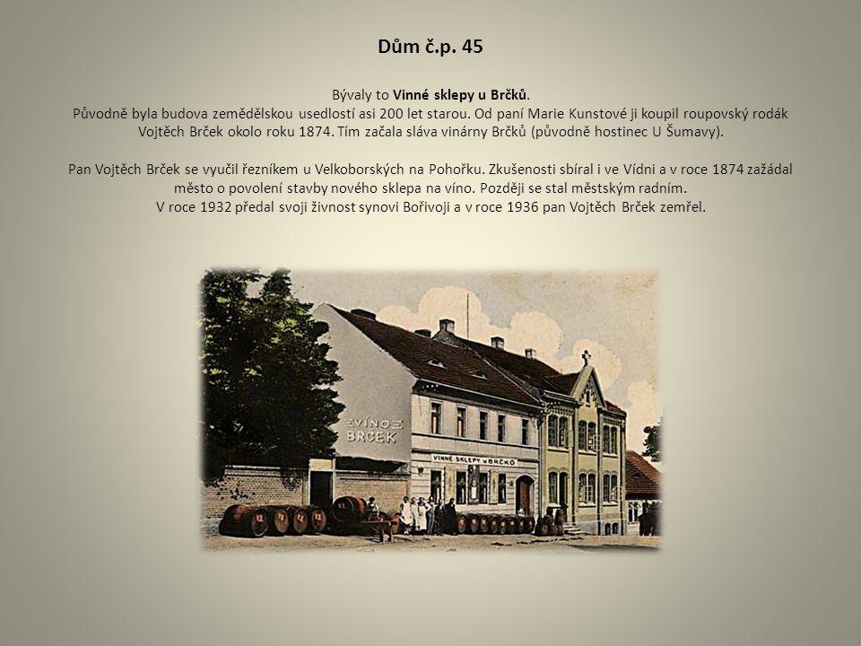 Dům č. p. 45 Bývaly to Vinné sklepy u Brčků