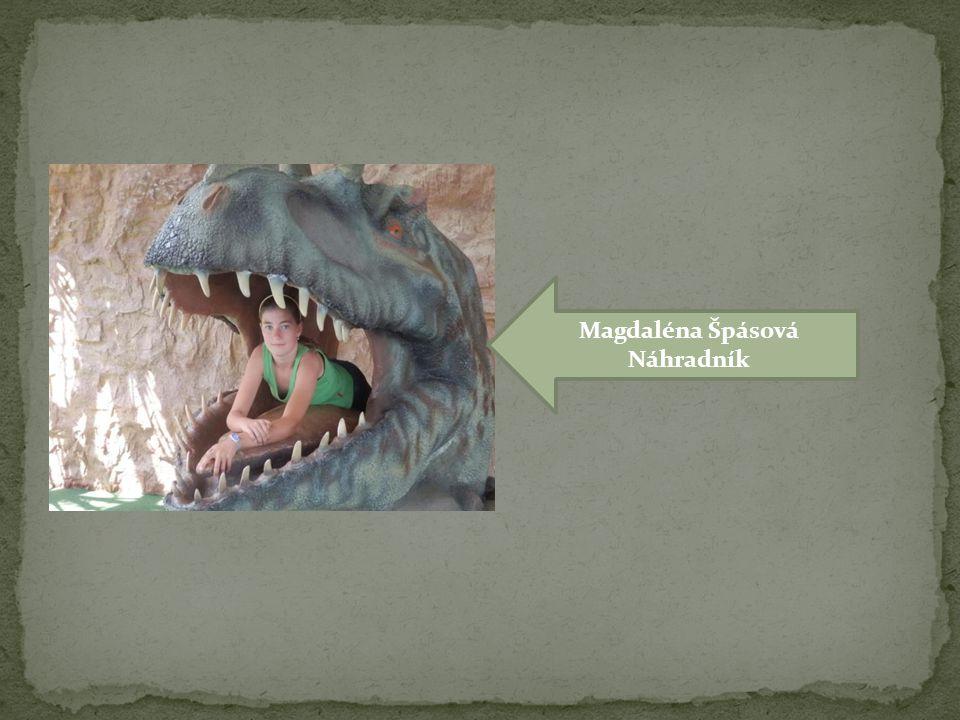 Magdaléna Špásová Náhradník