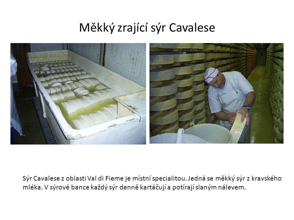 Měkký zrající sýr Cavalese