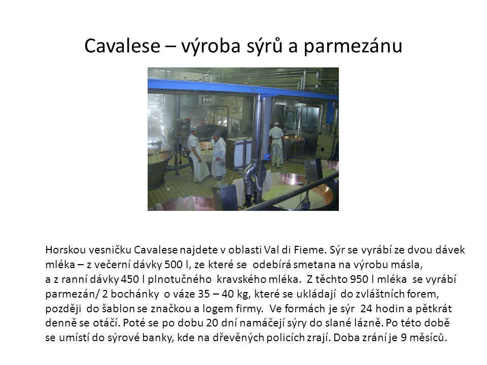 Cavalese – výroba sýrů a parmezánu