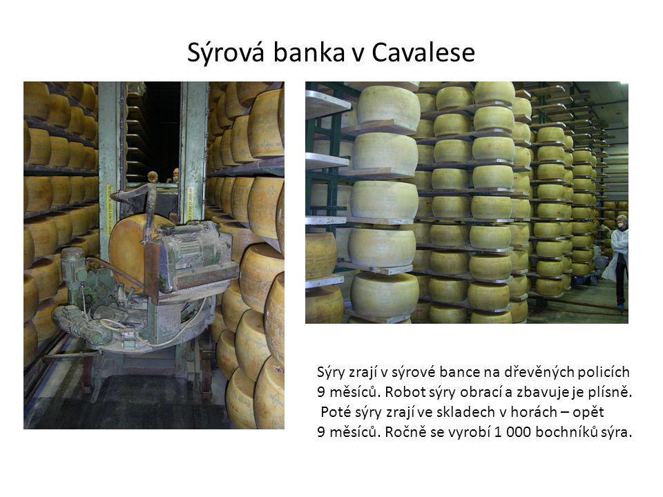 Sýrová banka v Cavalese