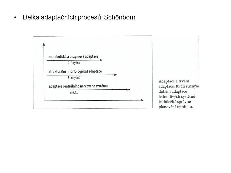 Délka adaptačních procesů: Schönborn
