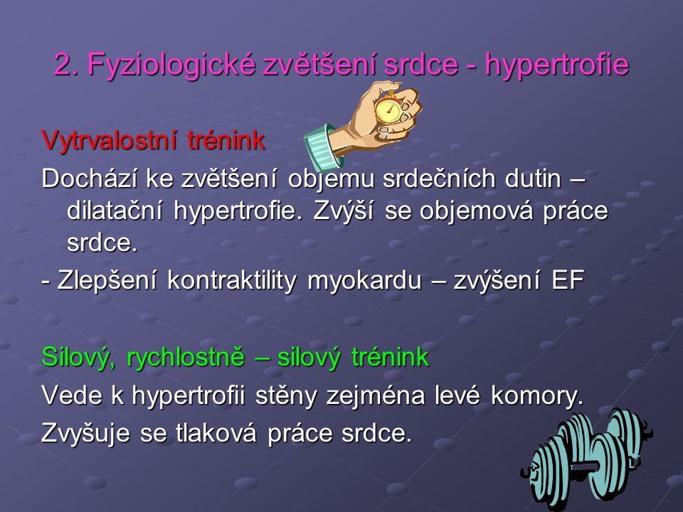 2. Fyziologické zvětšení srdce - hypertrofie