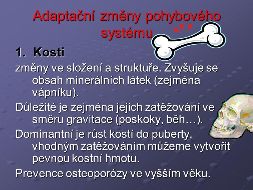 Adaptační změny pohybového systému