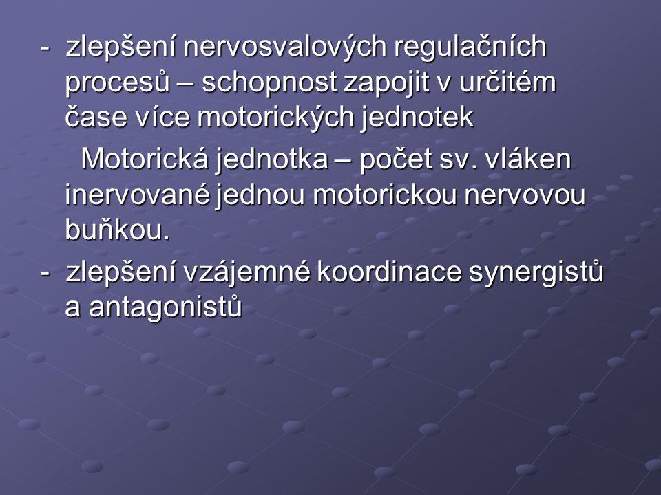 - zlepšení nervosvalových regulačních procesů – schopnost zapojit v určitém čase více motorických jednotek