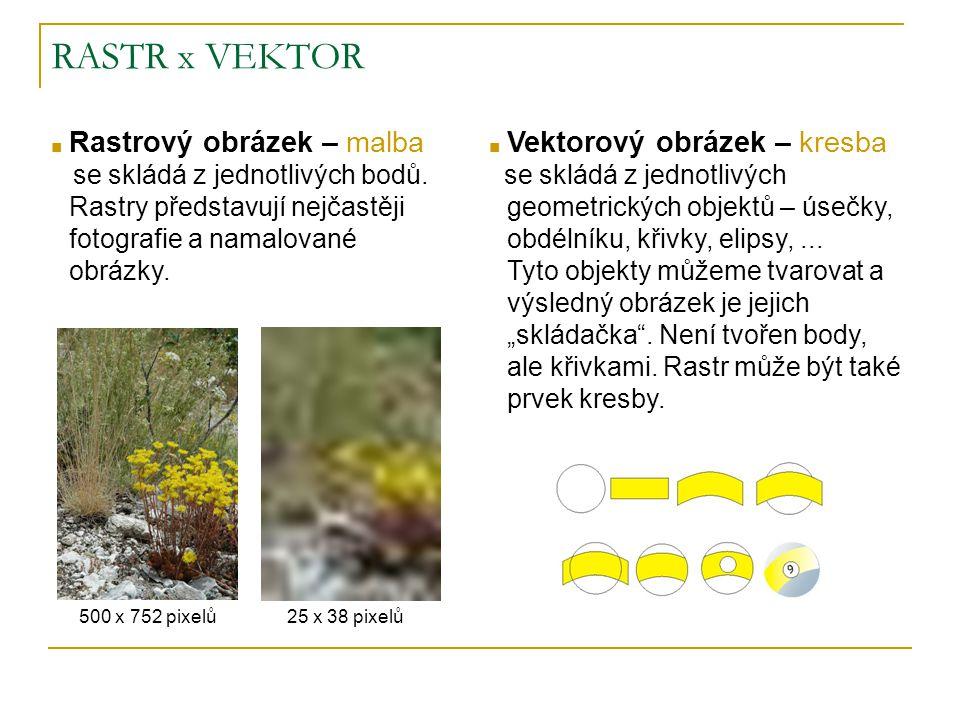RASTR x VEKTOR Rastrový obrázek – malba Vektorový obrázek – kresba