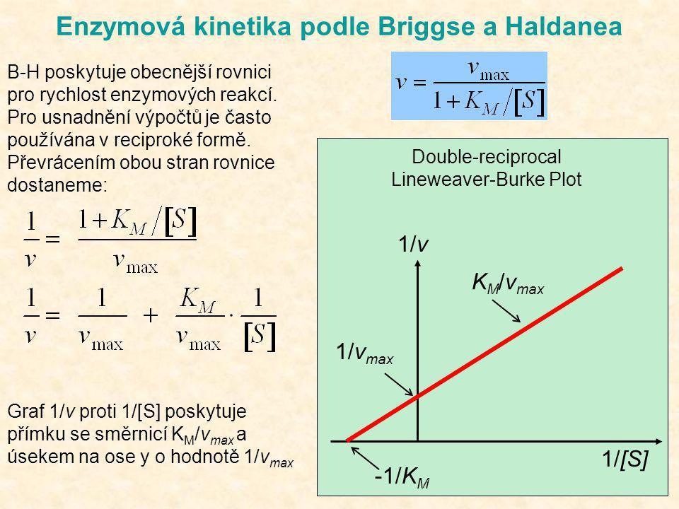 Enzymová kinetika podle Briggse a Haldanea