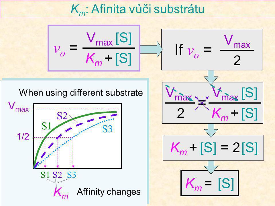 Km: Afinita vůči substrátu