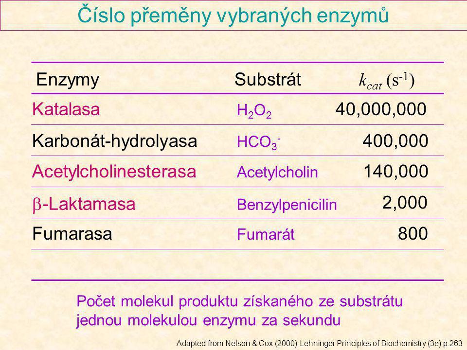 Číslo přeměny vybraných enzymů
