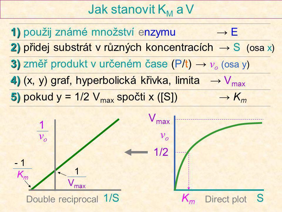 Jak stanovit KM a V 1) použij známé množství enzymu → E