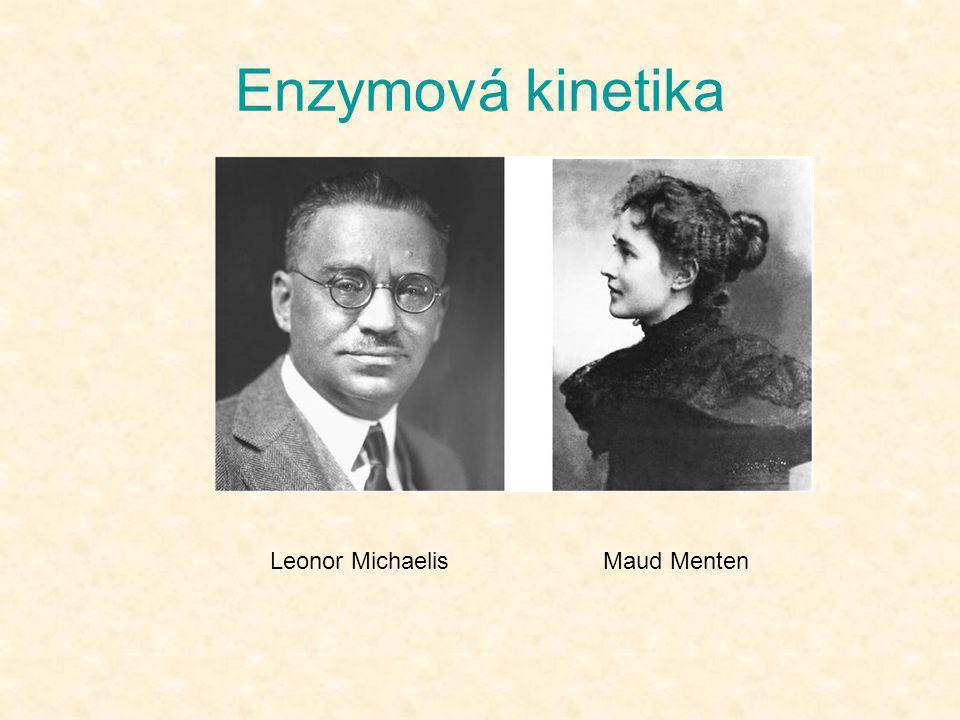 Enzymová kinetika Leonor Michaelis Maud Menten