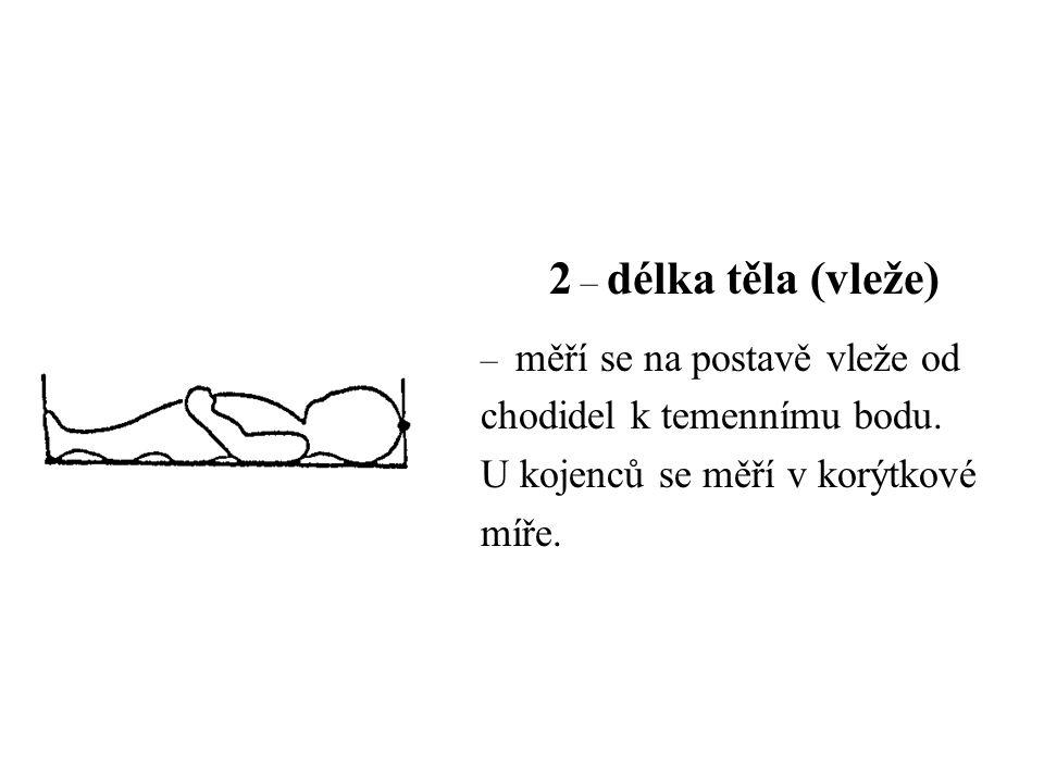 2 – délka těla (vleže) chodidel k temennímu bodu.