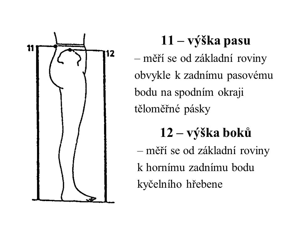 11 – výška pasu 12 – výška boků – měří se od základní roviny
