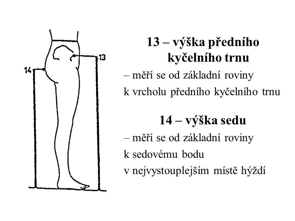 13 – výška předního kyčelního trnu