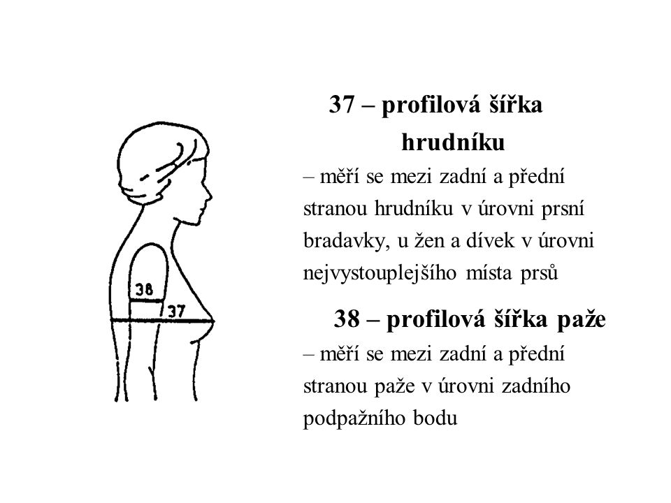 37 – profilová šířka hrudníku 38 – profilová šířka paže