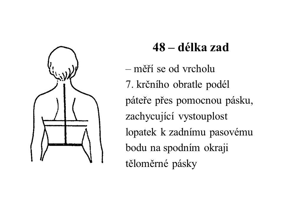 48 – délka zad – měří se od vrcholu 7. krčního obratle podél