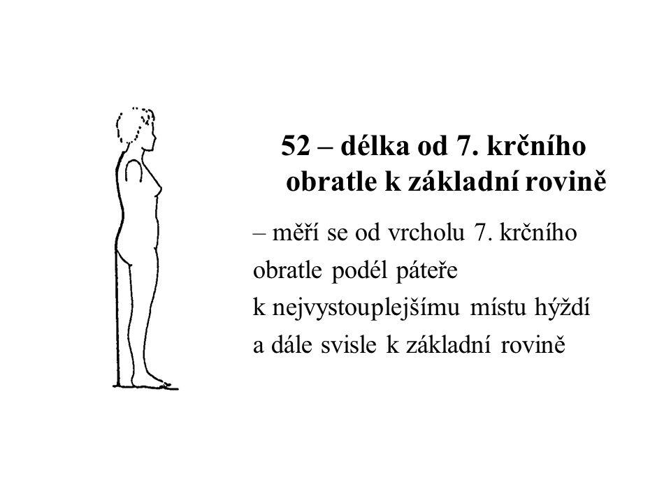 52 – délka od 7. krčního obratle k základní rovině