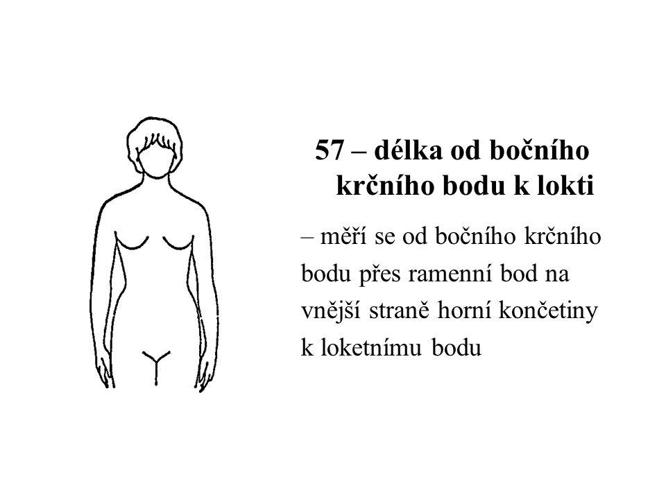 57 – délka od bočního krčního bodu k lokti