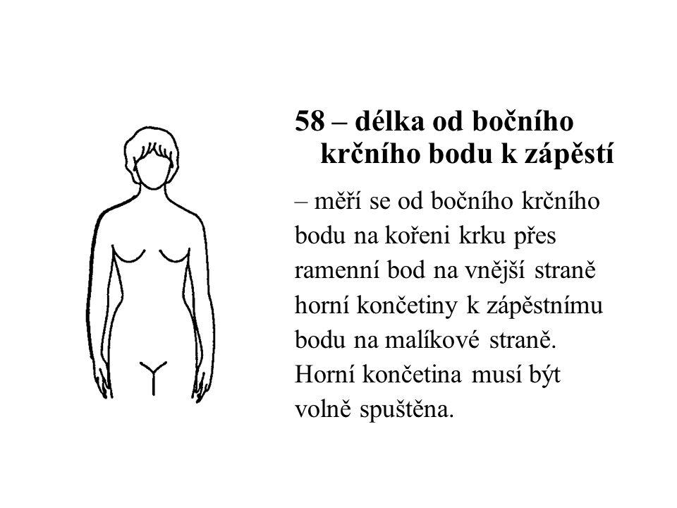 58 – délka od bočního krčního bodu k zápěstí