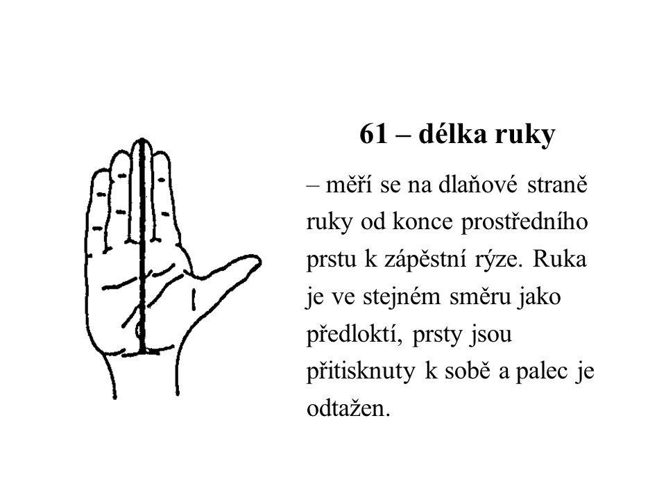 61 – délka ruky – měří se na dlaňové straně ruky od konce prostředního