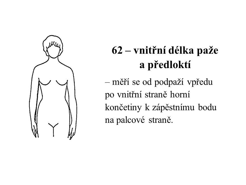 62 – vnitřní délka paže a předloktí – měří se od podpaží vpředu