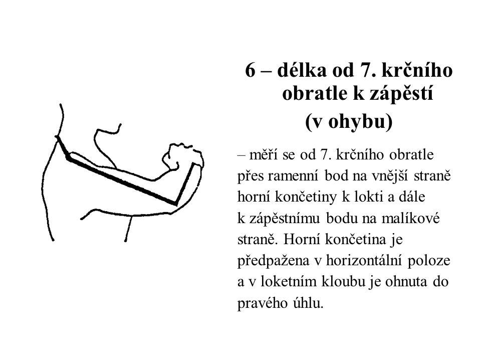6 – délka od 7. krčního obratle k zápěstí