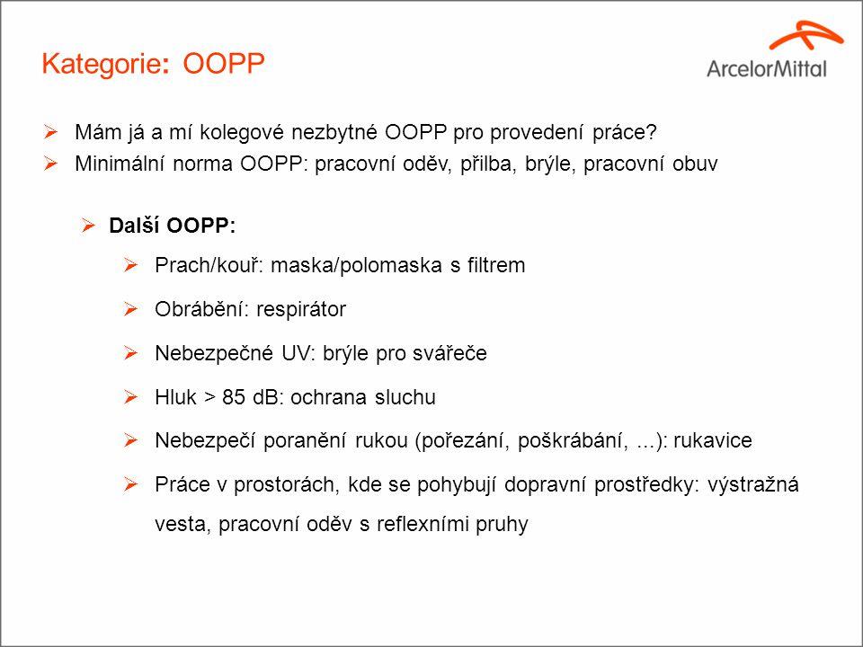 Kategorie: OOPP Mám já a mí kolegové nezbytné OOPP pro provedení práce Minimální norma OOPP: pracovní oděv, přilba, brýle, pracovní obuv.