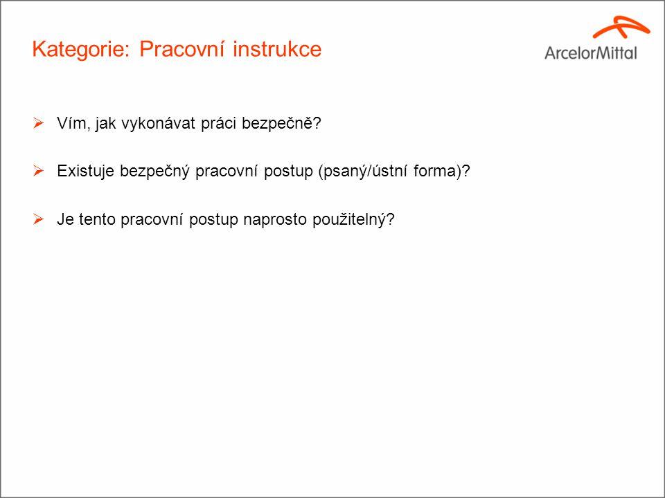 Kategorie: Pracovní instrukce