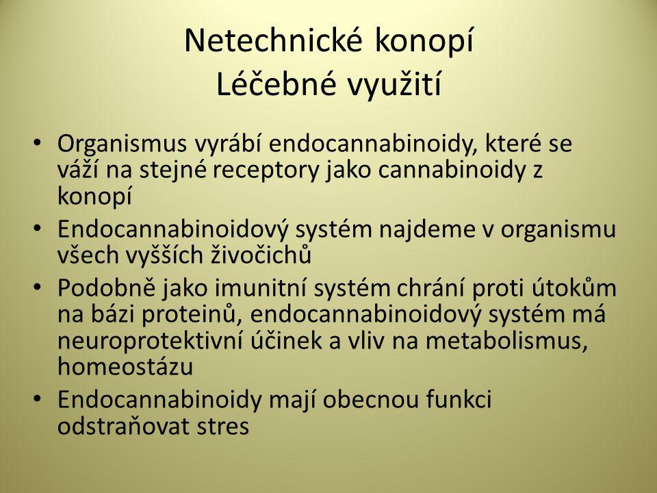 Netechnické konopí Léčebné využití