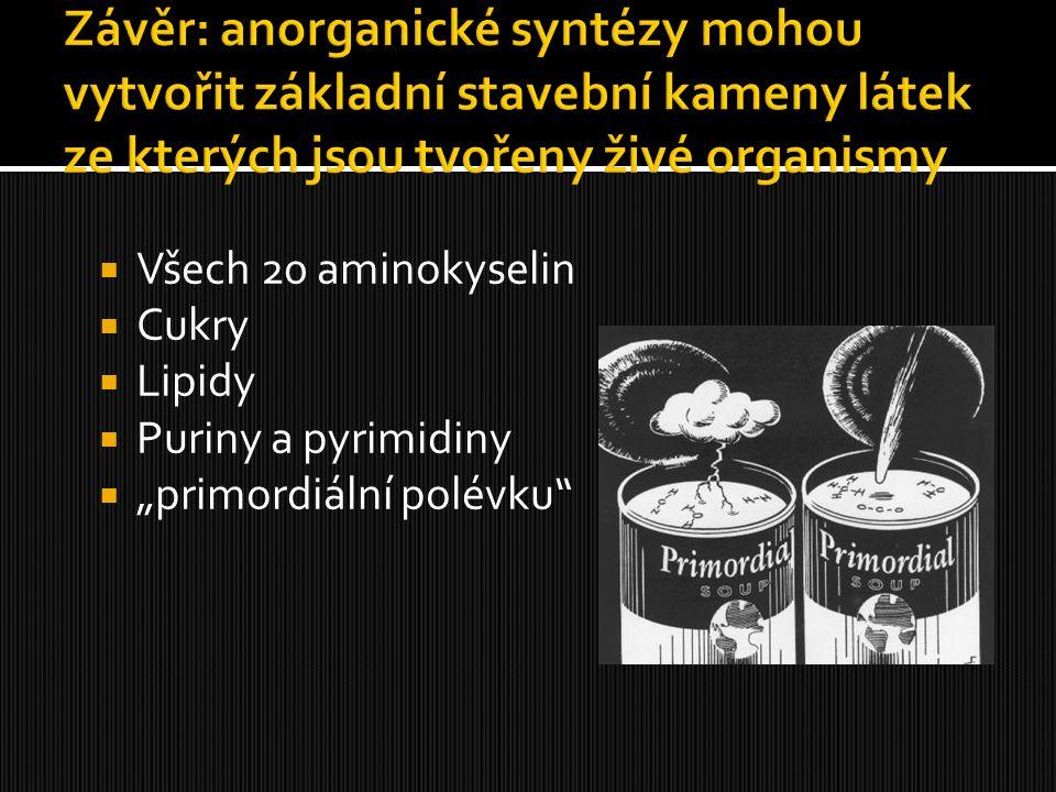 Závěr: anorganické syntézy mohou vytvořit základní stavební kameny látek ze kterých jsou tvořeny živé organismy