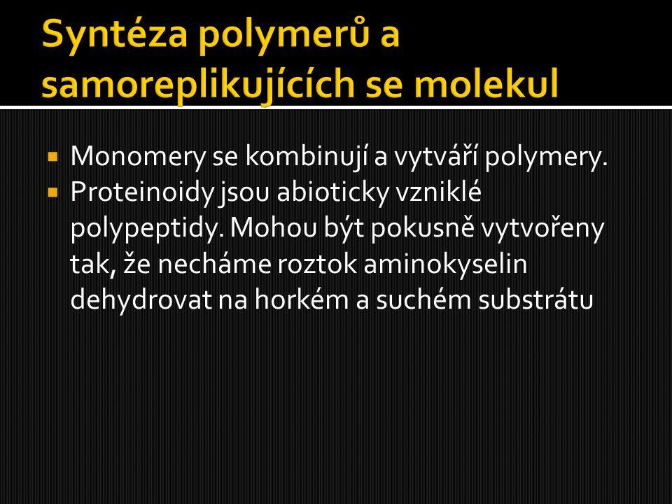 Syntéza polymerů a samoreplikujících se molekul