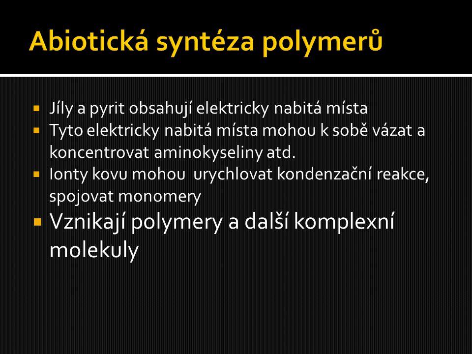 Abiotická syntéza polymerů
