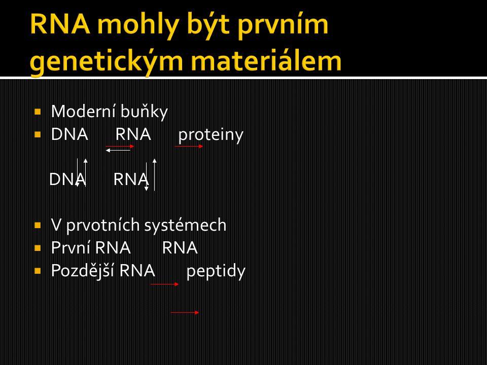 RNA mohly být prvním genetickým materiálem