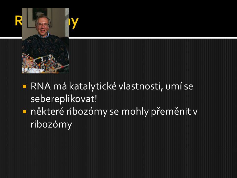 Ribozymy RNA má katalytické vlastnosti, umí se sebereplikovat!