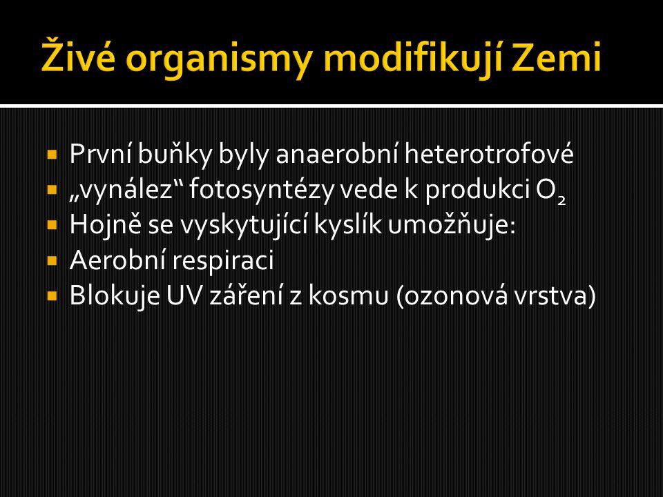 Živé organismy modifikují Zemi