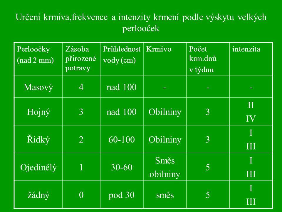 Určení krmiva,frekvence a intenzity krmení podle výskytu velkých perlooček