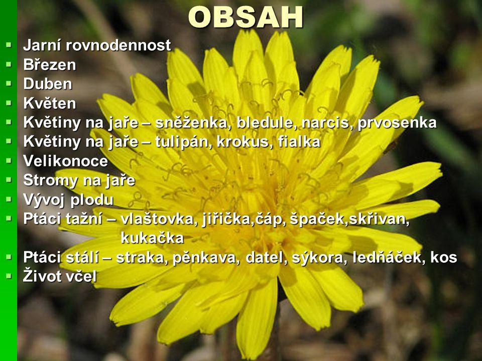 OBSAH Jarní rovnodennost Březen Duben Květen