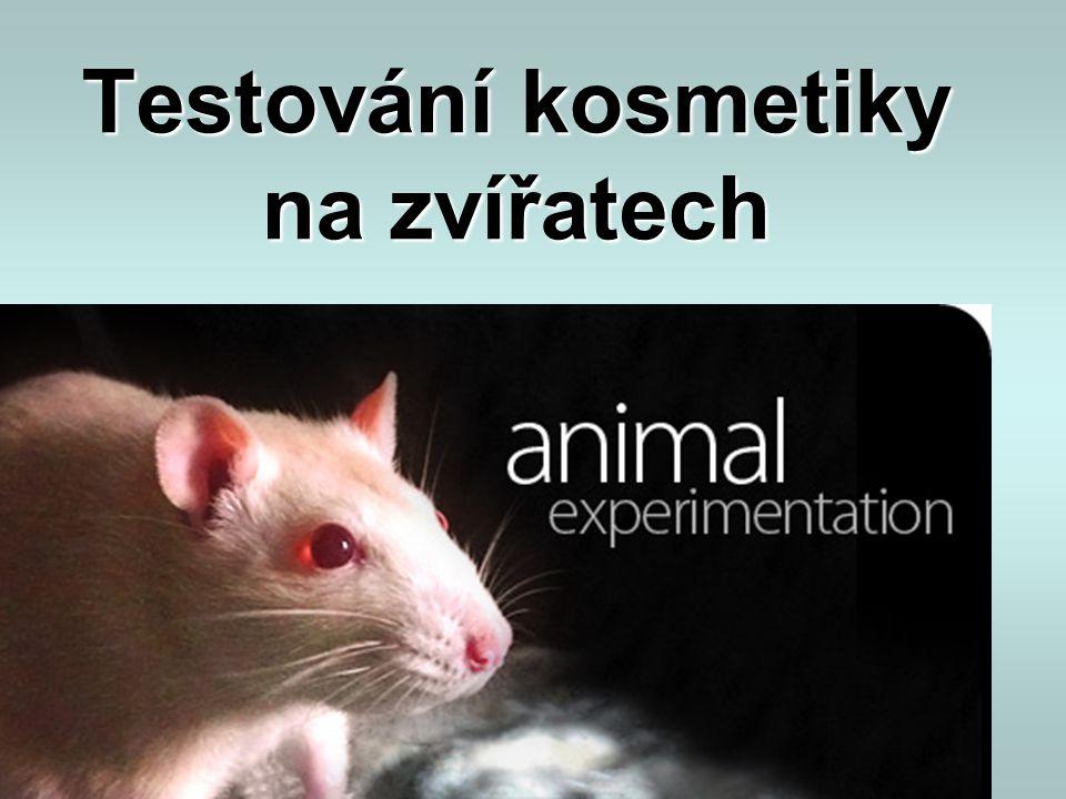 Testování kosmetiky na zvířatech
