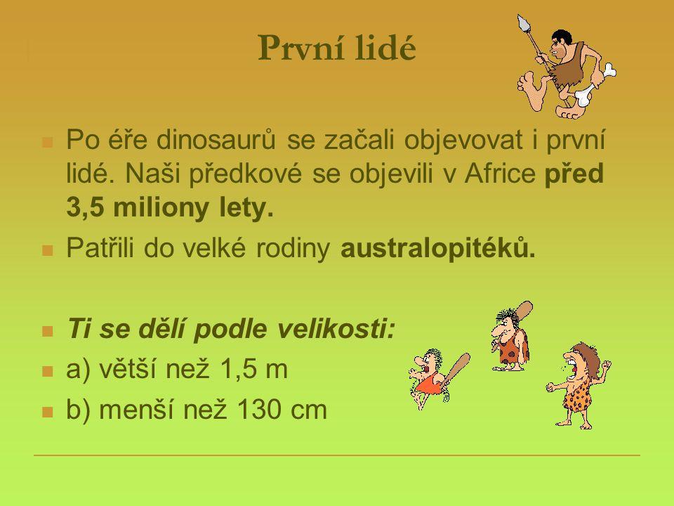První lidé Po éře dinosaurů se začali objevovat i první lidé. Naši předkové se objevili v Africe před 3,5 miliony lety.