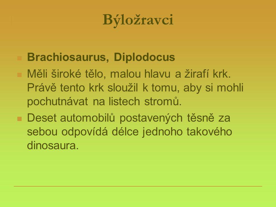 Býložravci Brachiosaurus, Diplodocus