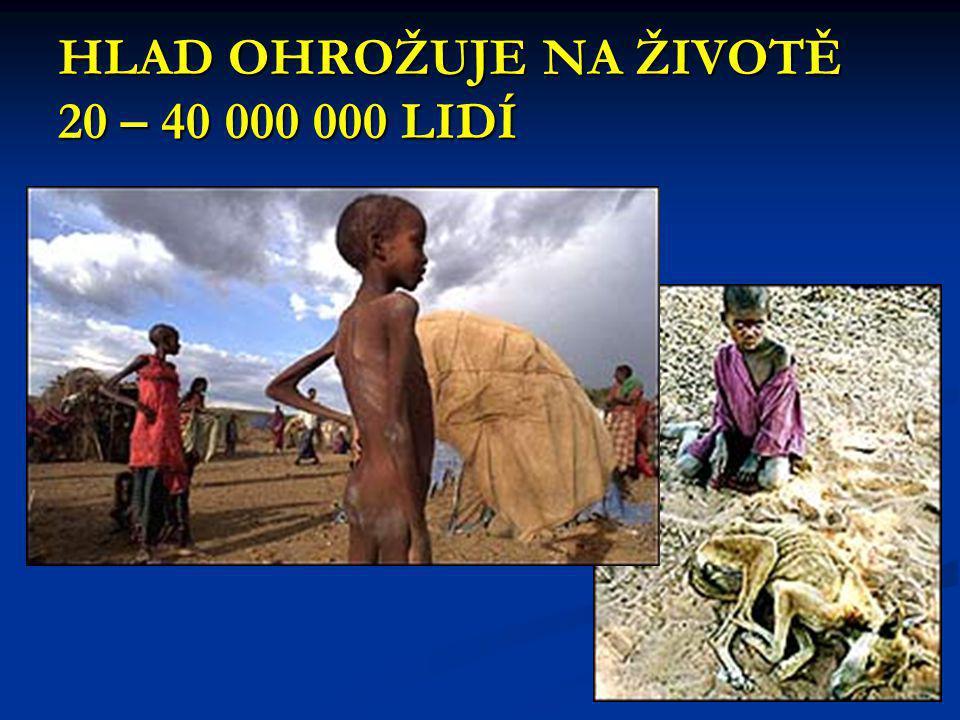 HLAD OHROŽUJE NA ŽIVOTĚ 20 – 40 000 000 LIDÍ