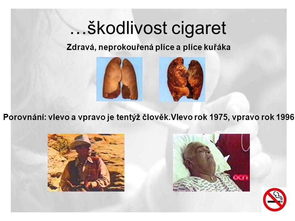 Zdravá, neprokouřená plíce a plíce kuřáka