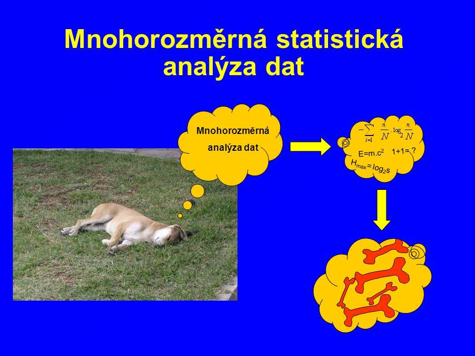Mnohorozměrná statistická analýza dat
