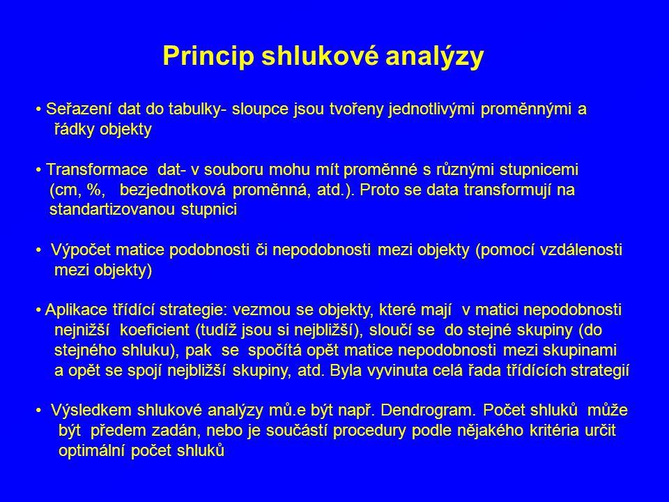 Princip shlukové analýzy