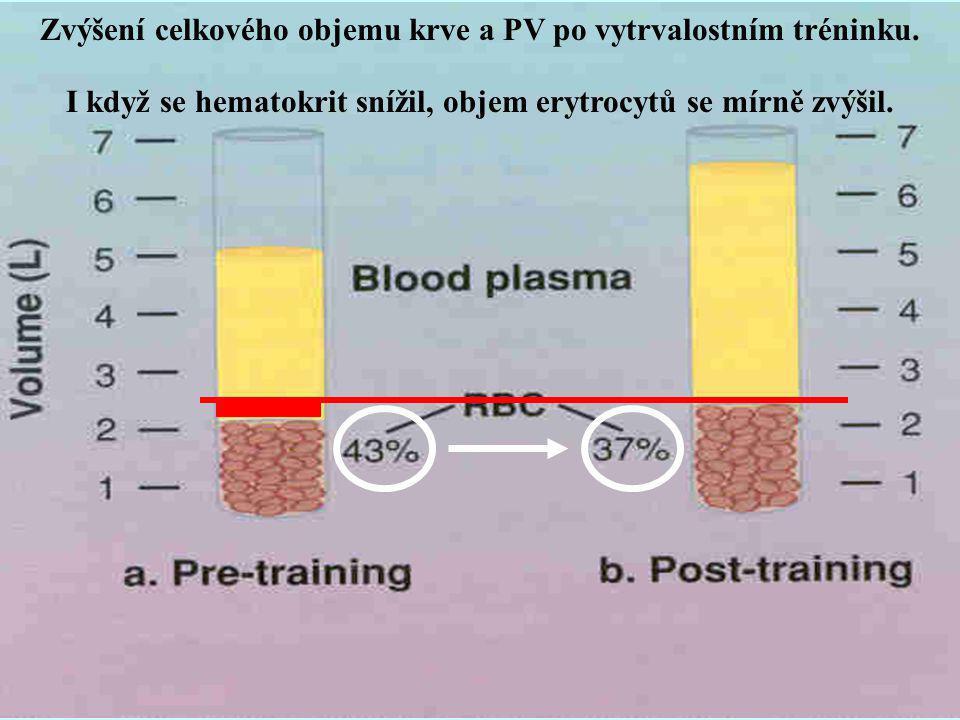 Zvýšení celkového objemu krve a PV po vytrvalostním tréninku.