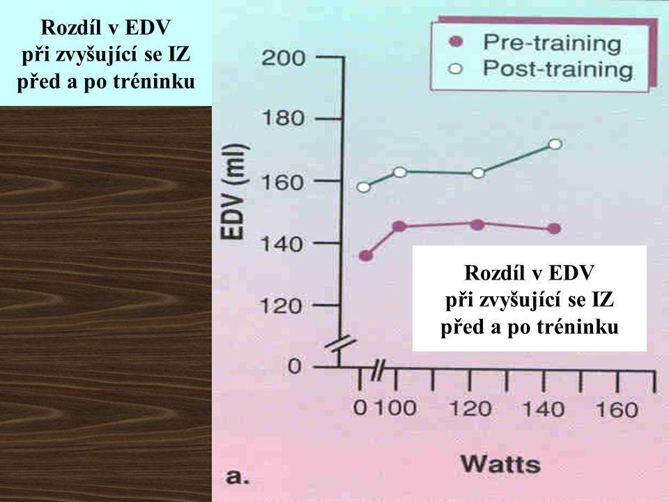 Rozdíl v EDV při zvyšující se IZ. před a po tréninku.