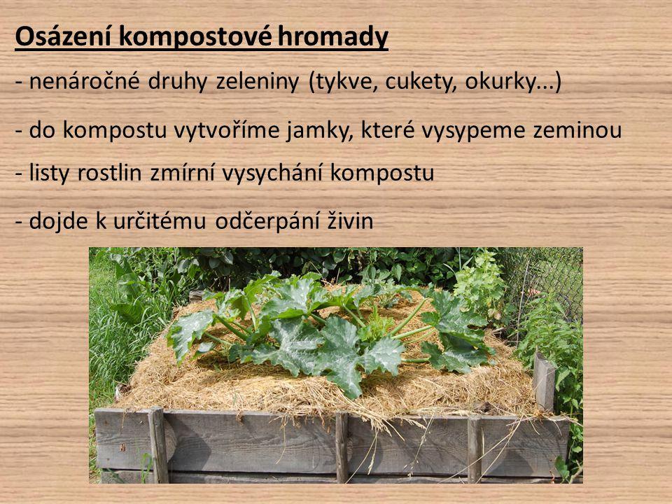 Osázení kompostové hromady